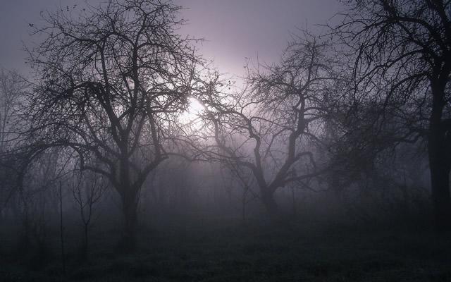 子供の頃に経験した幽体離脱現象を思い出しての画像