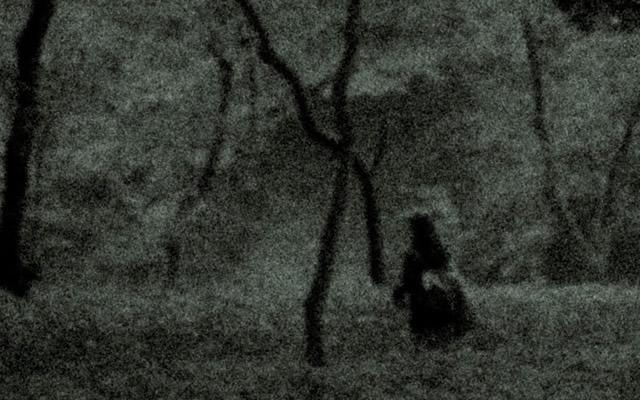 私達は全然霊は見えませんがの画像