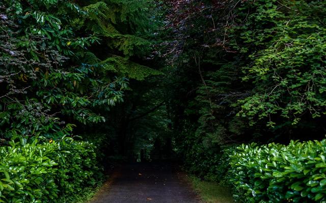 林間学校の様な所で一泊移住をした時の体験談の画像