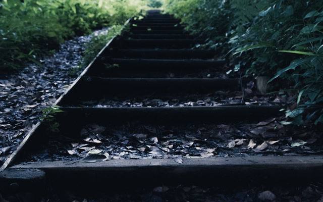 地元でも有名な『心霊の出るトンネル』で連れてきたのは何だ?の画像